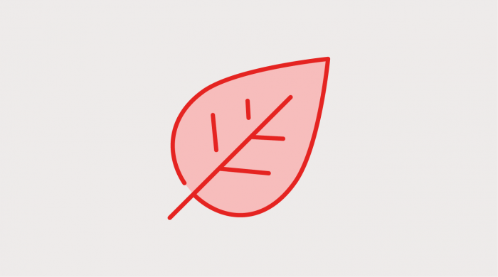 icon of a red leaf on a grey background